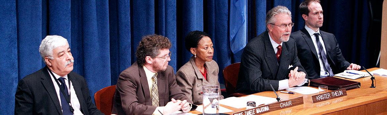 UN Human Rights Committee (c) IRIN